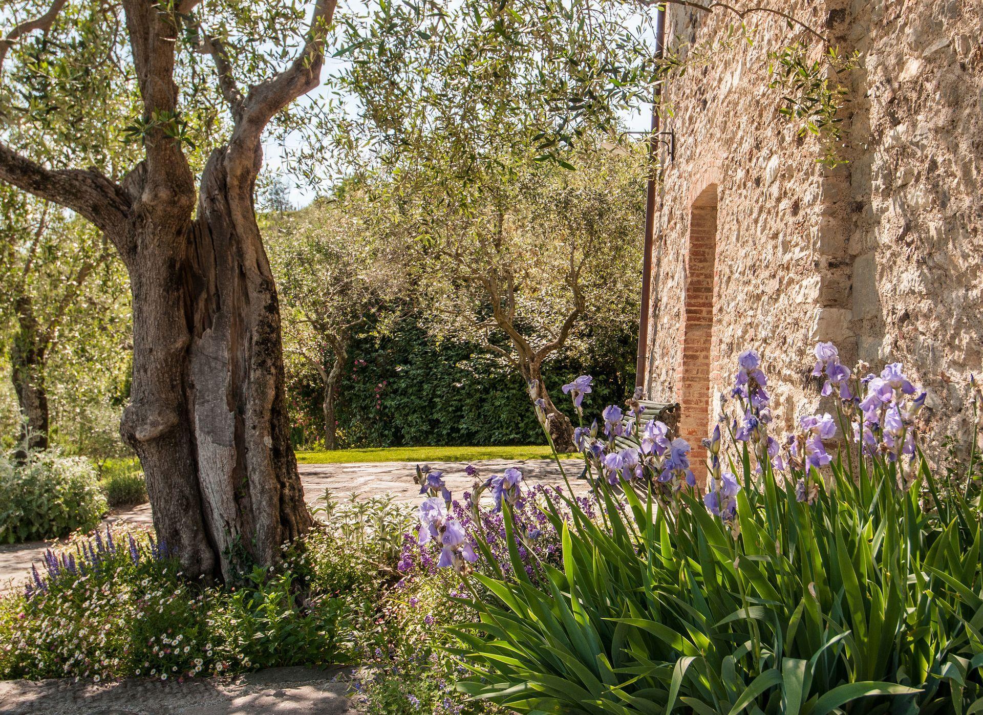 La Sorgente Villa in Tuscany Lucca - Salogi Villas, Italy